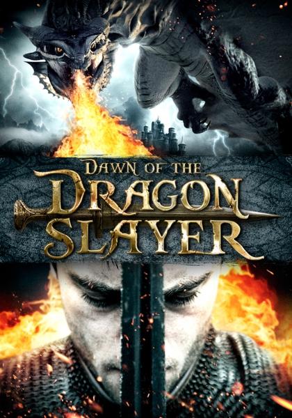 Paladin : le dernier chasseur de dragons (2011)